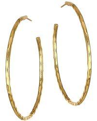 Nest 22k Yellow Goldplated Hoop Earrings - Metallic
