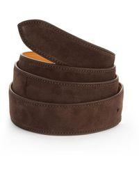 Corthay Dark Brown Suede Belt