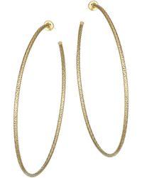 Jennifer Zeuner Donnie Goldplated Large Hoop Earrings