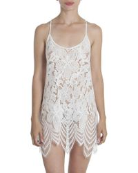 In Bloom Women's Lace Scalloped Chemise - Black - White