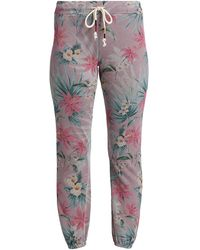 Sundry Tropical Print Sweatpant - Gray