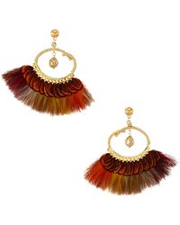 Gas Bijoux 24k Goldplated & Feather Drop Earrings - Metallic