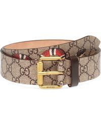 Gucci - GG Supreme Belt With Kingsnake Print - Lyst