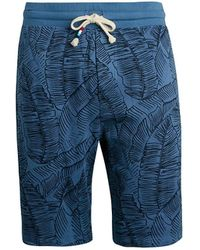 Sol Angeles Pacific Palm Drawstring Shorts - Blue
