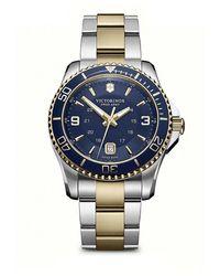 Victorinox Maverick Two-tone Stainless Steel Watch - Blue