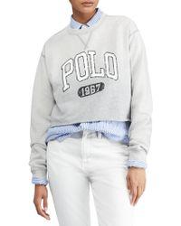 Polo Ralph Lauren - Cropped Graphic Sweatshirt - Lyst