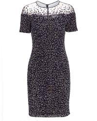 Pamella Roland Snow-leopard Sequin Cocktail Dress - Blue