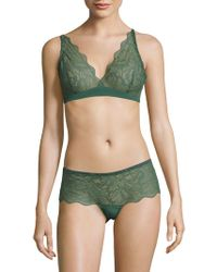 Addiction Nouvelle Lingerie Sugar Daddy Lace Bra - Green