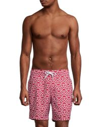 Sperry Top-Sider Men's Volly Print Trunks - Red - Size M