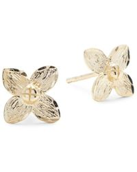 Saks Fifth Avenue Women's 14k Yellow Gold Flower Stud Earrings - Metallic