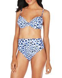Tahari Cheetah-print Underwire Bikini Top - Blue