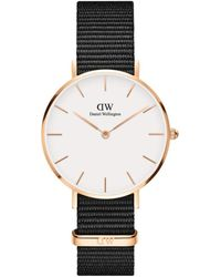 Daniel Wellington Classic Petite Cornwall Rose Goldtone And Nato Strap Watch, 32mm - Multicolor