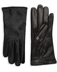 Portolano Dyed Calf Hair Leather Gloves - Black