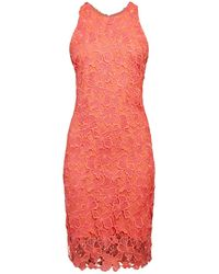 Alexia Admor Floral Lace Sheath Dress - Pink