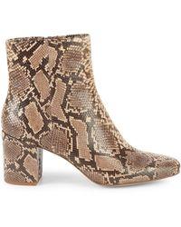 Splendid Heather Iii Snakeskin-embossed Leather Booties - Multicolour