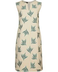 Lafayette 148 New York Taren Botanical Jacquard Shift Dress - Multicolor