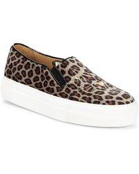 Charlotte Olympia - Leopard-print Platform Sneakers - Lyst