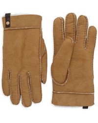 UGG Tenney Shearling & Suede Gloves - Multicolour