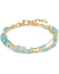 Gurhan Delicate Flurries 24k Yellow Gold, Apatite & Aquamarine Triple-strand Bracelet - Blue
