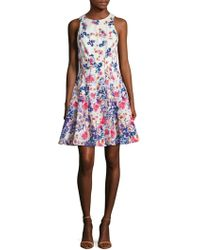 Maggy London - Cotton Printed Fit & Flare Dress - Lyst