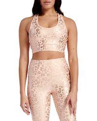 Electric Yoga Independence Cheetah Sports Bra - Pink