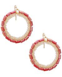 Panacea Goldtone Beaded Hoop Drop Earrings - Multicolour