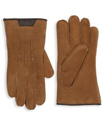 UGG Sheepskin Gloves - Brown