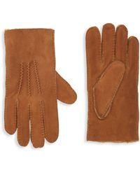 Portolano Shearling-lined Suede Gloves - Brown
