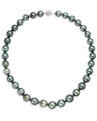 Belpearl 14k White Gold & Black Round Tahitian Pearl Collar Necklace - Metallic