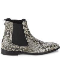 Kurt Geiger Freddie Snake-print Leather Chelsea Boots - Multicolor
