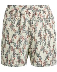 BCBGMAXAZRIA Floral Pull-on Shorts - Multicolour