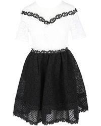 Maje Women's Two-tone Lace Dress - Two Tone - Size 1 (s) - Black