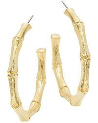 Kenneth Jay Lane - Medium Goldtone Bamboo Hoop Earrings - Lyst