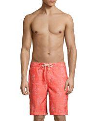 Tommy Bahama Baja Arauca Swim Trunks - Red