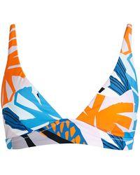 Red Carter Printed Plunge Bikini Top - Blue