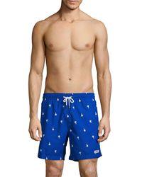Trunks Surf & Swim Palm Tree Swim Shorts - Blue