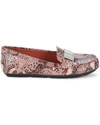 Calvin Klein Lisette3 Snake-print Loafers - Multicolour