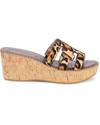 Sam Edelman Regis Leopard-print Calf Hair Wedge Sandals - Multicolour
