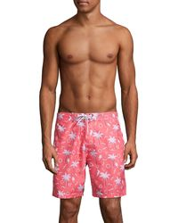 Trunks Surf & Swim Palm Tree Print Swim Trunks - Multicolour