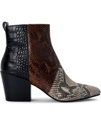 Dolce Vita Crew Snakeskin-print Leather Booties - Black