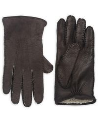 Saks Fifth Avenue Collection Shearling-lined Deerskin Leather Gloves - Brown