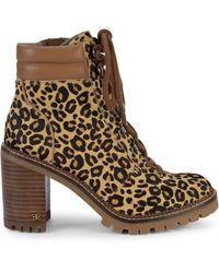 Sam Edelman Sade Leopard Calf-hair Stacked Heel Combat Boots - Brown