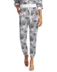 Joie Women's Temptest Sweatpants - Porcelain - Size Xs - Multicolor