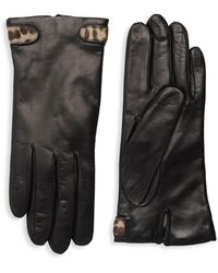 Portolano Dyed Calf Hair-trimmed Leather Gloves - Black