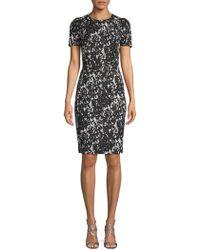 Calvin Klein Two-tone Sheath Dress
