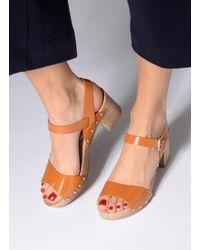 Ippon Vintage Sok colors - Marron