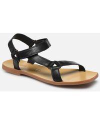 St. Agni Sportsu Sandals - Negro