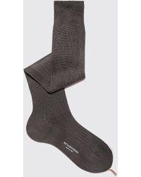SCAROSSO Socken Italian Shoe Grey Cotton Knee Socks - Grau