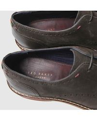 Ted Baker Eizzg Shoes - Brown