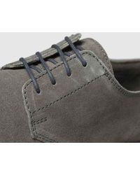 Schuh Simpson Derby Shoes - Grey